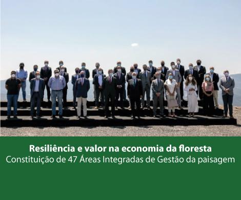 Resiliência e valor na economia da floresta